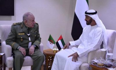 Saïd Chengriha reçu par le prince héritier d'Abu Dhabi