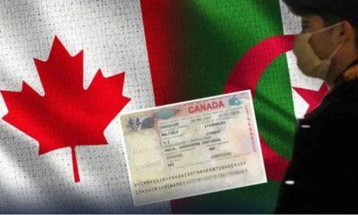 étudiants algériens canada
