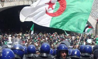 La police politique : résurrection du toufikisme