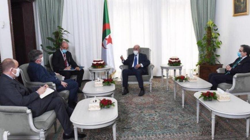"""Ambassadeur des Etats-Unis à Alger : """"J'ai eu une discussion très productive"""" avec le président Tebboune"""