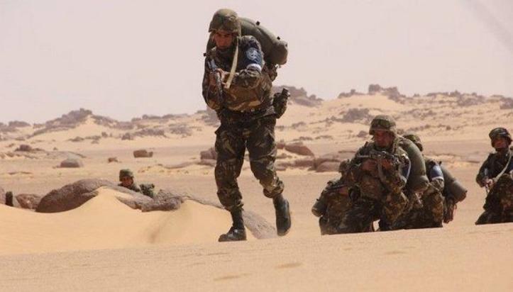 MDN : un terroriste capturé à In M'guel (Tamanrasset)