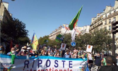 Hirak : des centaines d'Algériens marchent à Paris